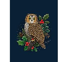 Holly Owl Photographic Print