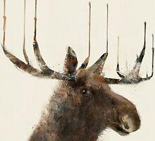 the moose by bri-b
