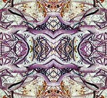 distortions of perception by Eternalwhoa