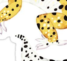 Leopard Gecko - Normal Morph Sticker