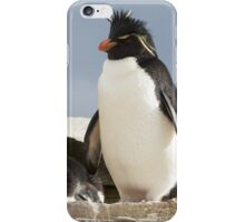 "Rockhopper Penguins ~ ""Welcome to our home"" iPhone Case/Skin"