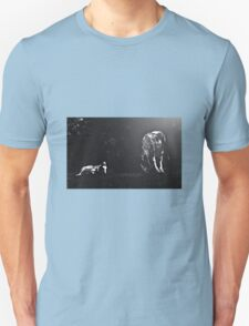 Moonlit Gypsy mare and foal Unisex T-Shirt