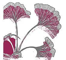 Nature plant eco Photographic Print