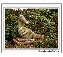 """""""Sure the neighbours are a bit odd right Enough!"""" Photographic Print"""