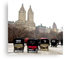 Bicycle carriages in Central Park, New York City Canvas Print