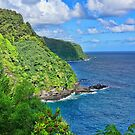 Tropical Views  by Lanis Rossi