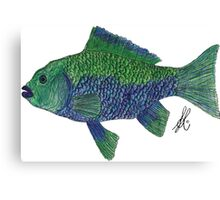 Green/Blue Fish Canvas Print