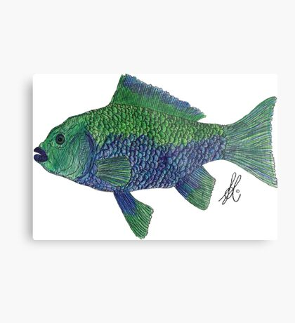 Green/Blue Fish Metal Print