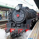 5917 Steam Train  by Richard  Windeyer