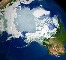 Circum-Arctic permafrost by StocktrekImages