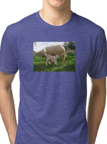 Lamb Suckling From An Ewe Tri-blend T-Shirt