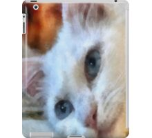 Van Cat - Pet Portrait iPad Case/Skin