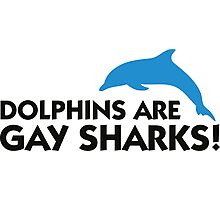 Dolphins are gay sharks! Photographic Print
