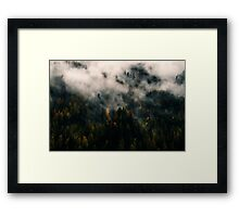 Forest In The Mist Framed Print