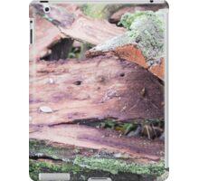 Old ragged bark, moss-covered iPad Case/Skin