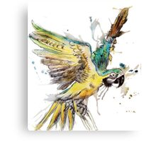 Parrot in Flight Canvas Print
