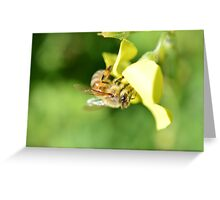 Bee #JoBLING Sour Sob Greeting Card