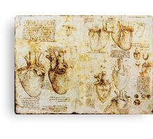Heart And Its Blood Vessels Canvas Print