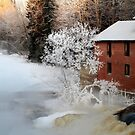 8.1.2016: Frosty Tree, Abandoned Mill by Petri Volanen