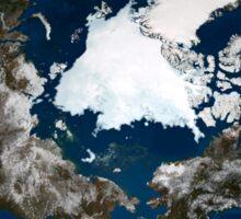 Arctic sea ice. Sticker