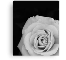 Noir Rose III Canvas Print
