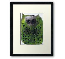 Greenie Owl Framed Print