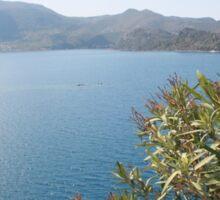 Oleander Againt The Aegean near Selimiye Sticker