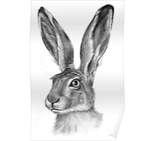 Cute Hare G126 Poster