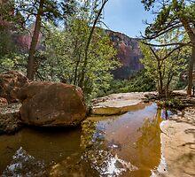 Zion View by barkeypf