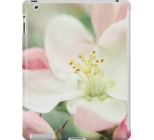 Pastel Blossoms iPad Case/Skin
