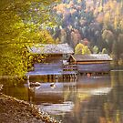 Autumn Lakeside  by Boston Thek Imagery