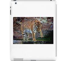 Beautiful  Tiger Scene  iPad Case/Skin