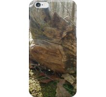 Weather Beater  iPhone Case/Skin