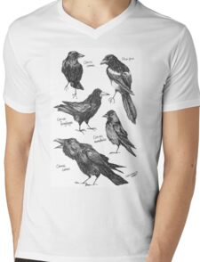 Corvids Mens V-Neck T-Shirt