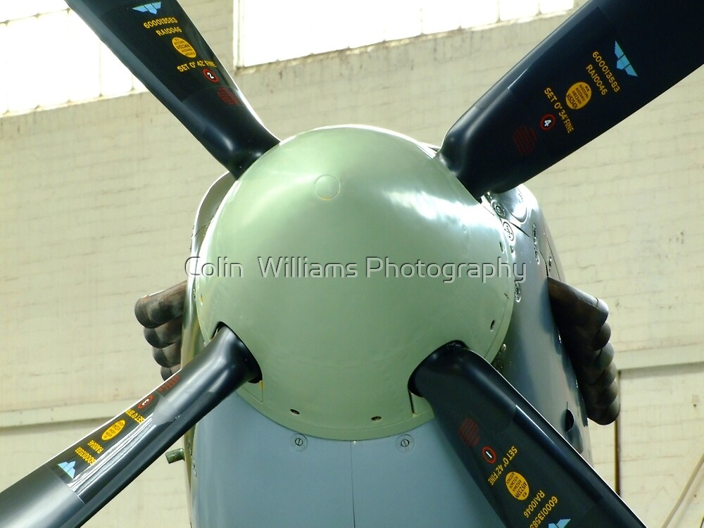 Spitfire Mk IX MH434 - Prop and Spinner by Colin  Williams Photography