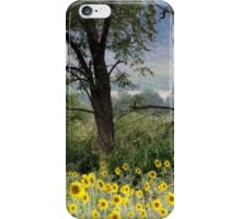 When the Sunflowers Bloom iPhone Case/Skin