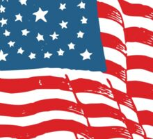 Patriotic Vintage Historic American Flag Sticker