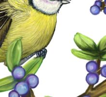 Bird and Sloe Branches Sticker