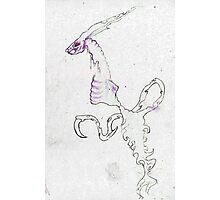Rabbit wraith Photographic Print