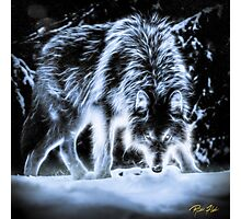 Gloom Wolf Photographic Print