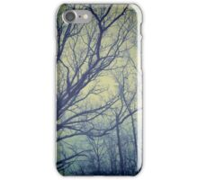 Trees - cold morning light (2015) iPhone Case/Skin