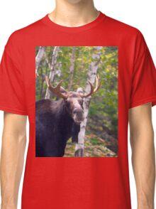 Maine Bull Moose  Classic T-Shirt