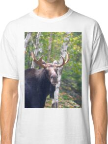 Maine Bull Moose  Classic T-Shirt