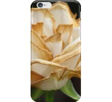 Wilting Rose with a Hint of Gold iPhone Case/Skin