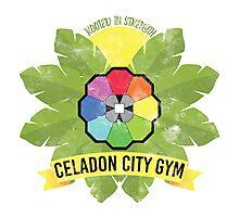 Celadon City Gym Photographic Print