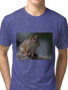 Red Squirrel Tri-blend T-Shirt