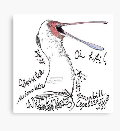 African spoonbill, Lepelaar Canvas Print
