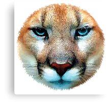 Cougar, puma, jaguar Canvas Print