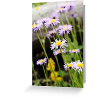 Wild Purple Greeting Card