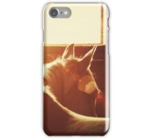 Flare iPhone Case/Skin